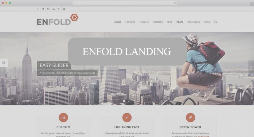 قالب وردپرسی Landing - Enfold